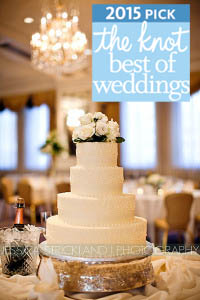 the knot best of weddings 2015 with cake